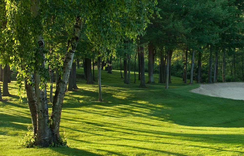 Grepp till Golfklubba